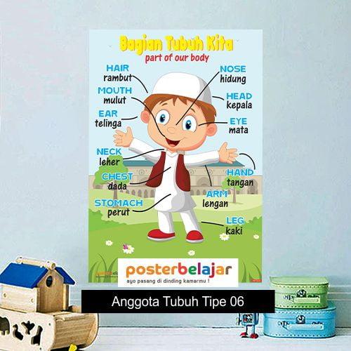 Anggota Tubuh Tipe 6 poster belajar mainan anak edukatif edukasi bahasa inggris alat peraga