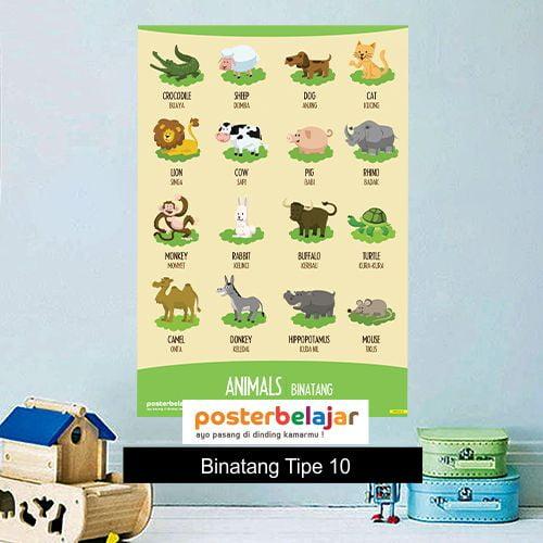 Binatang tipe 10 poster belajar mainan anak edukatif edukasi bahasa inggris alat peraga