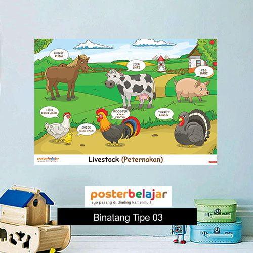 Binatang tipe 3 poster belajar mainan anak edukatif edukasi bahasa inggris alat peraga