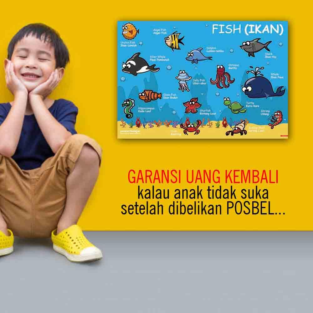 kenapa 5 POSBEL poster belajar pendidikan mainan anak edukatif edukasi