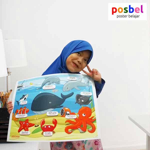 a2 POSBEL poster belajar mainan edukasi edukatif alat peraga pendidikan bahasa inggris anak