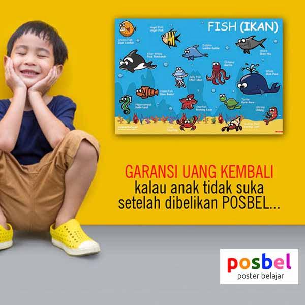 a5 POSBEL poster belajar mainan edukasi edukatif alat peraga pendidikan bahasa inggris anak