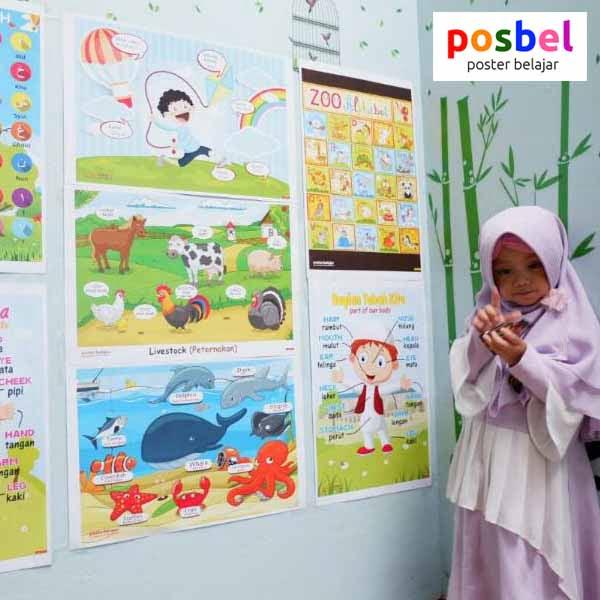 a7 POSBEL poster belajar mainan edukasi edukatif alat peraga pendidikan bahasa inggris anak