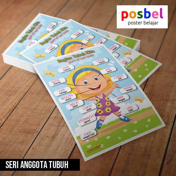 seri anggota tubuh posbel poster belajar mainan edukasi edukatif alat peraga pendidikan anak