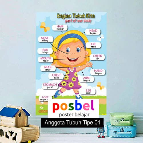 Anggota Tubuh Tipe 1 poster belajar mainan anak edukatif edukasi bahasa inggris alat peraga-min